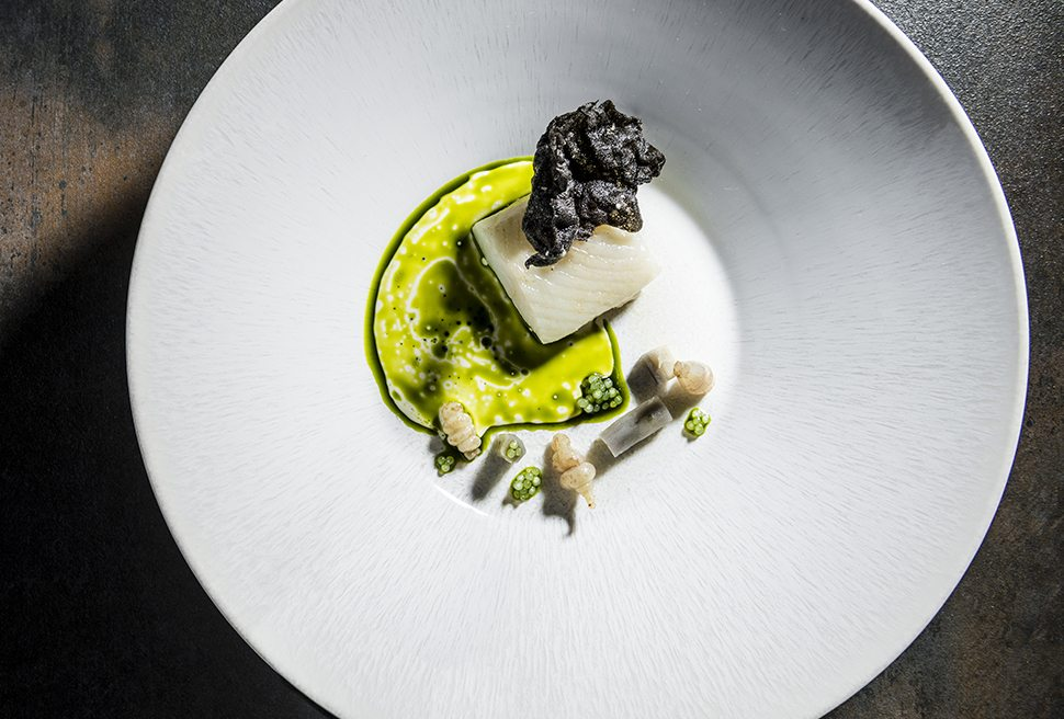 Stephan Zippl | Halibut, carciofo cinese, gobo, olio all'aneto e chips di tapioca